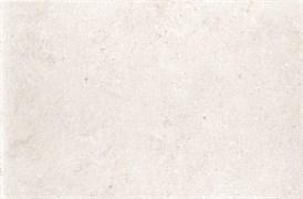 Плитка Loma Blanco DT91 25*38