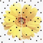 CUBA GERBERA Панно желтое YL 59х59,5